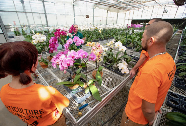 Horticulture Technology students standing next to orchid flowers.
